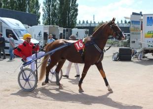 Pierre Vercruysse (Topaze Jef (13) hajtója)