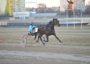 Balogh Bernadett és Olajbáró győzelme a Kincsem Parkban